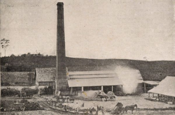 The cedars sugar mill 1873 1886 for The cedar mill